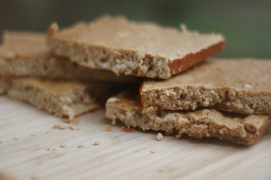 Pumpkin Pie Protein Bar