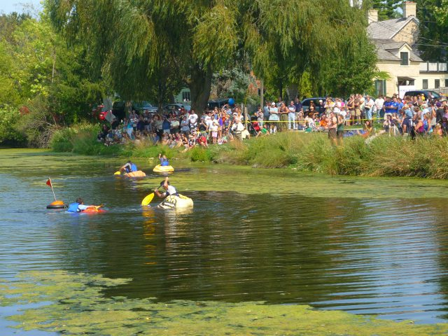 Pumpkin Regatta
